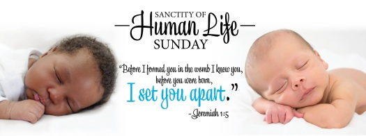 Sanctity Of Life Sunday Assurance For Life